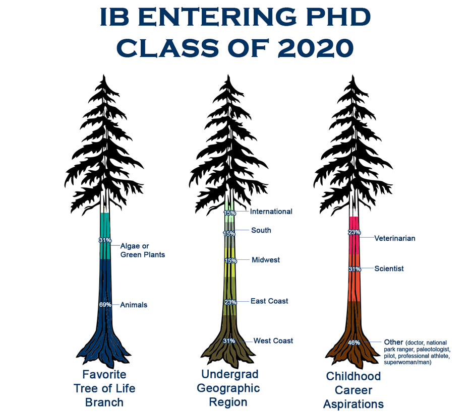 IB entering PhD class infographic_2020