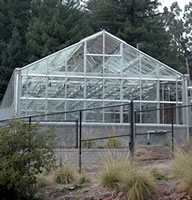 Jane Gray greenhouse